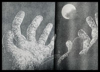 161-4.jpg