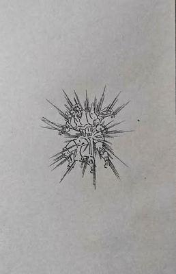 193-8.jpg