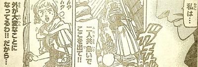 260-4.jpg