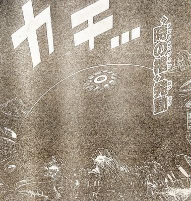 299-13.jpg