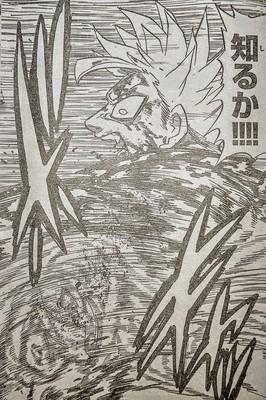 305-4.jpg